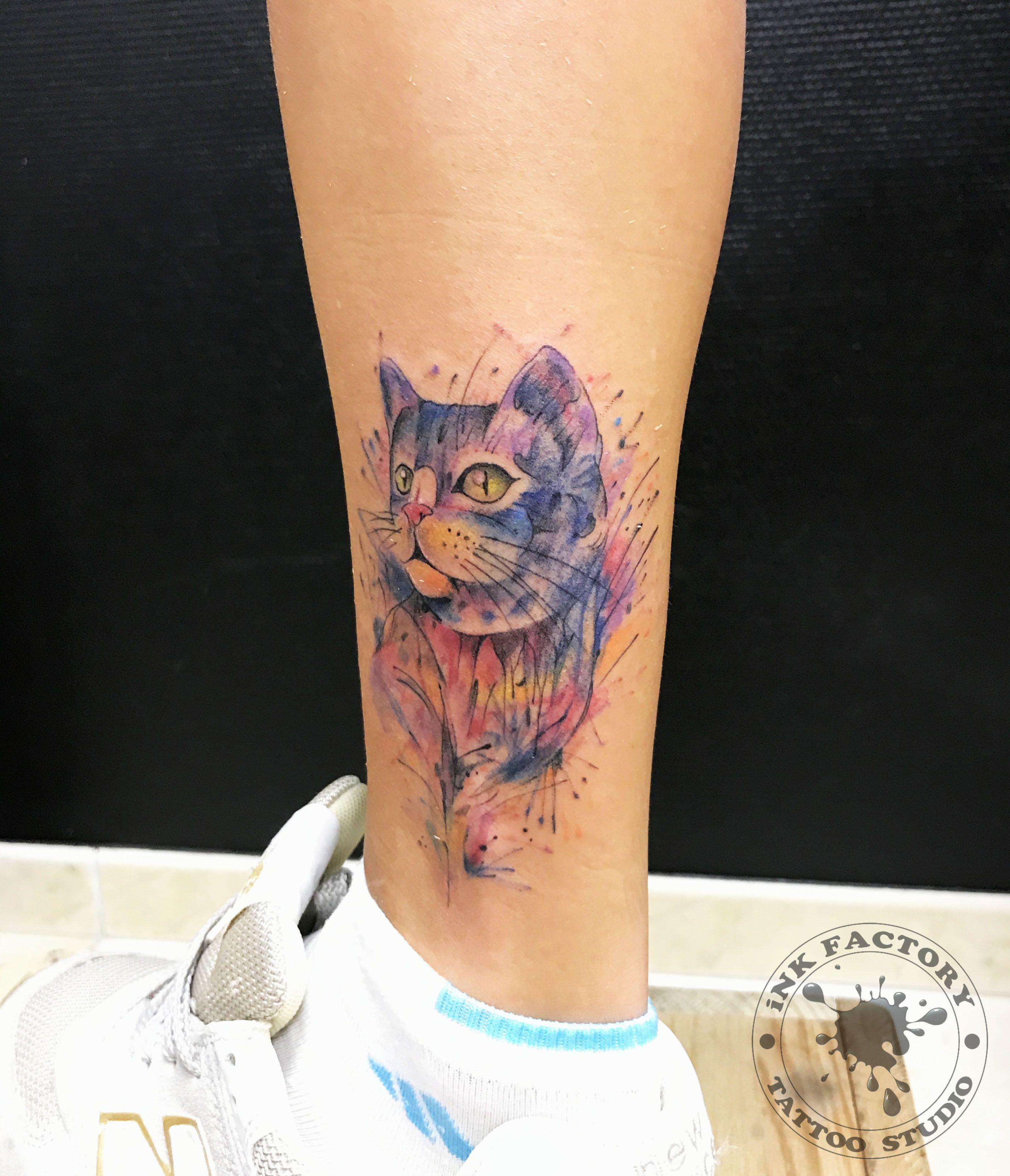 Котик в акварели