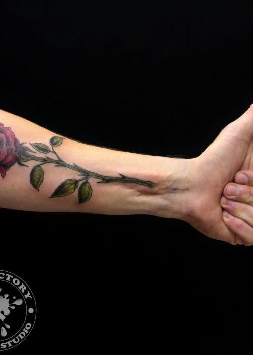 фото тату Красная роза