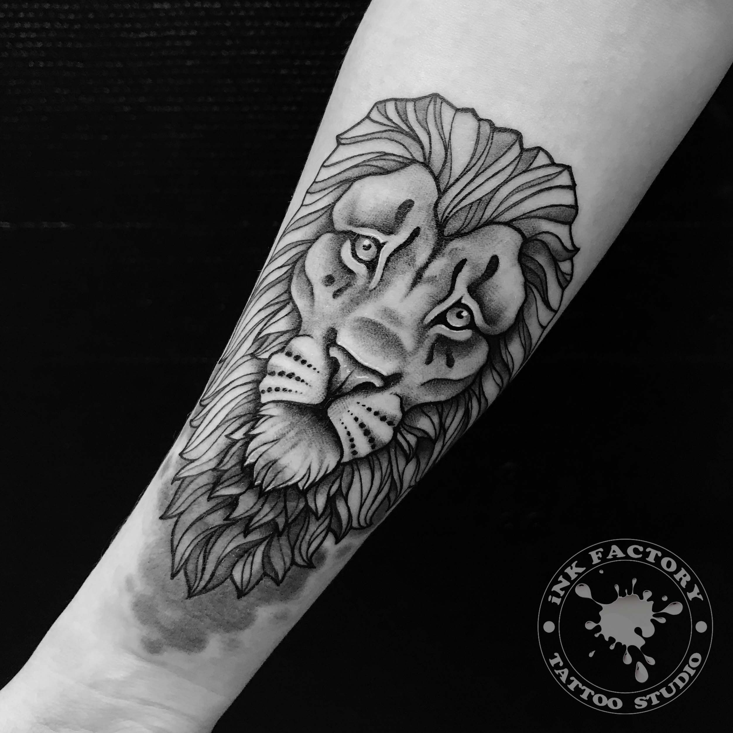 Перекрытие львом