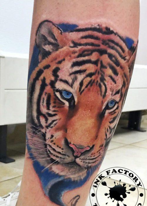 фото тату Тигр
