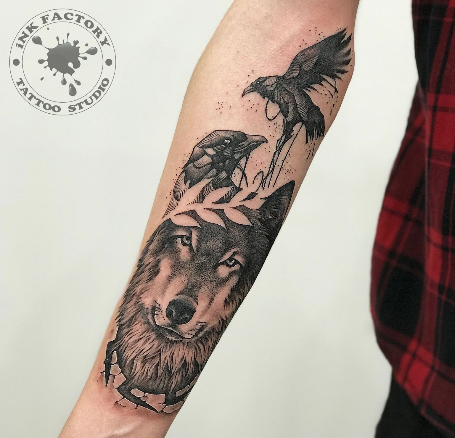 Волк с вороном
